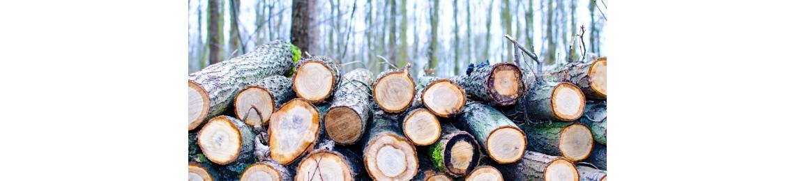 Log fuel kent